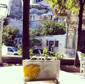 Salaş İstanbul Cafeleri Sultanahmet Turing Cafe 300x295 Salaş İstanbul Cafeleri   Sultanahmet   Turing Cafe