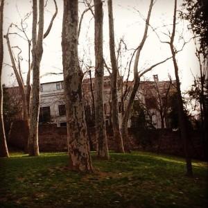 Setüstü çay bahçesi 2 300x300 Setüstü Çay Bahçesinde bir dem tarih...